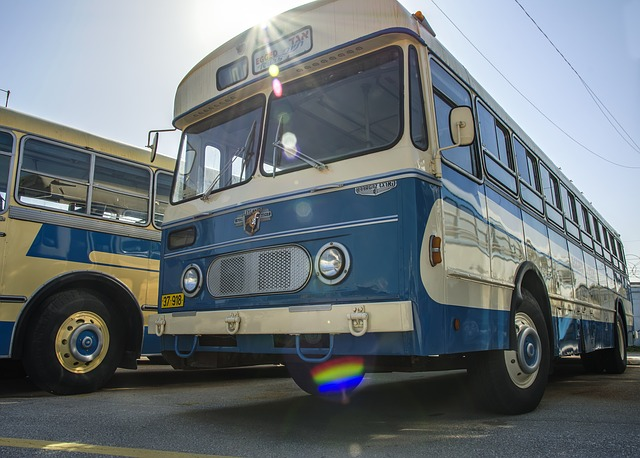dreamdiary-bus