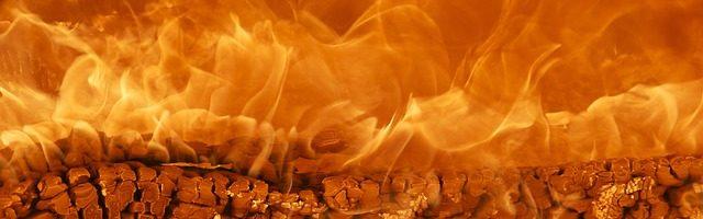 dreamdiary-Burning vigorously