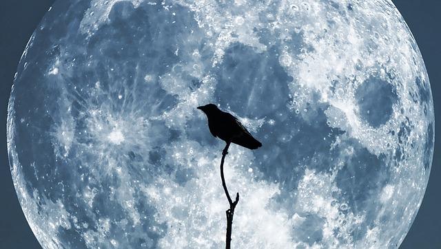 dreamdiary-moon