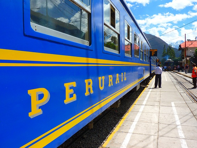dreamdiary-train