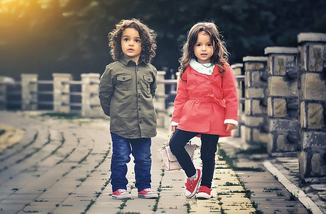 dreamdiary-twins