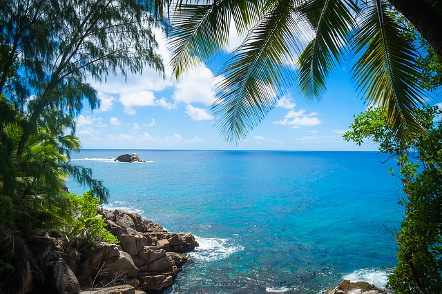 dreamdiary-coastline-