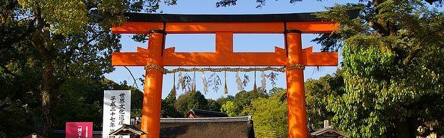 dreamdiary-torii