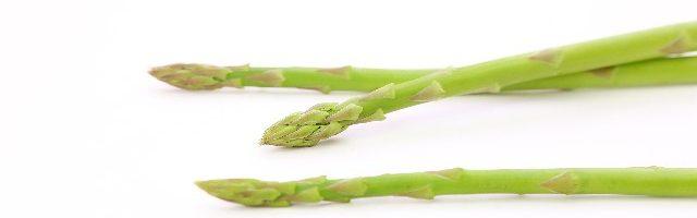 dreamdiary-Asparagus