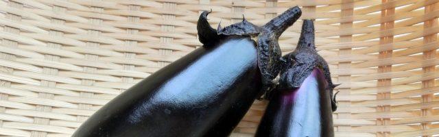 dreamdiary-Eggplant