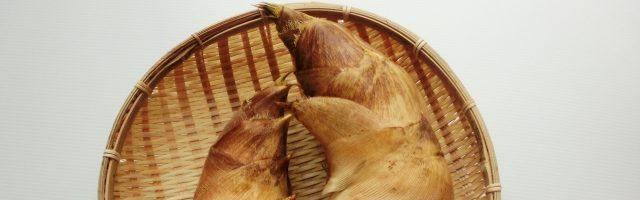 dreamdiary-bamboo shoots