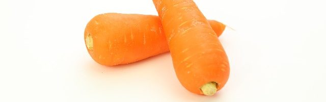 dreamdiary-carrot