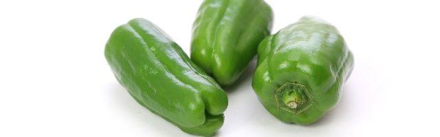 dreamdiary-green pepper