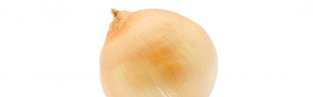 dreamdiary-onion