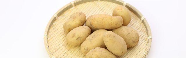 dreamdiary-potato
