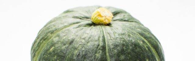 dreamdiary-pumpkin